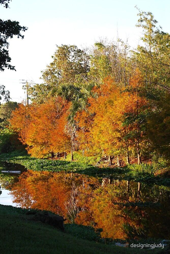 December Morn on Deerfield Creek by designingjudy