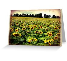 Endless Sun Greeting Card