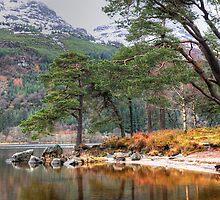 Loch Eck by JPassmore