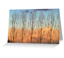 Sunset Colors- Country Roads- 2-18-2012 Greeting Card
