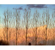 Sunset Colors- Country Roads- 2-18-2012 Photographic Print