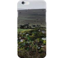 Moor Wall iPhone Case/Skin