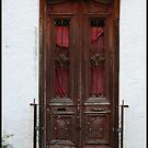 Old Wood Door by gregAllore