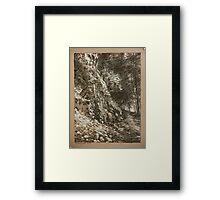 Tiffany Falls. Framed Print