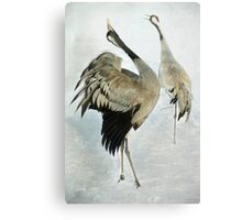 The Dance of the Cranes - 2 of 2 Canvas Print