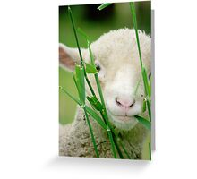 Hungry Junior Greeting Card