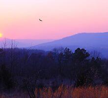 Smok'en Sunset by NatureGreeting Cards ©ccwri