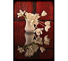 Springy Tulips Photographic Print