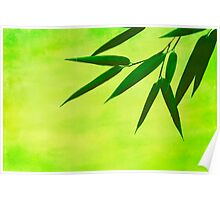bamboo leaves #2 Poster