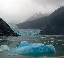 Glacier Bay Iceberg and Glacier by tperlste