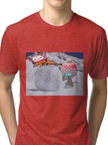 Two Cats Enjoy The Winter Tri-blend T-Shirt