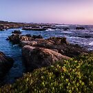 Rocky Shoreline at Dusk by Kathleen  Bowman