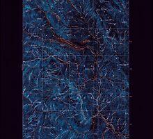 USGS Topo Map Washington State WA Chiwaukum 240506 1901 125000 Inverted by wetdryvac