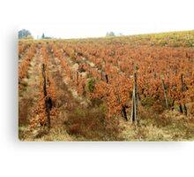 Chianti shire landscape(Tuscany) italy Canvas Print