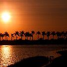 Palm Trees At Sunrise by Lynne Morris