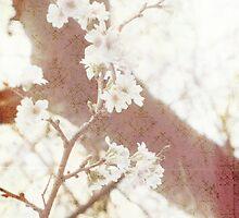 Spring in Tokyo by Sybille Sterk