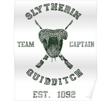 Slytherin Quidditch Poster