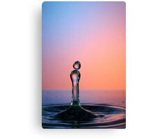 Splashing Water Droplet Canvas Print
