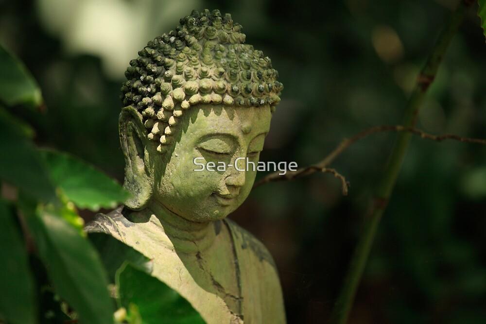 Buddha by Sea-Change