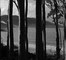 Depot Beach by Noel Elliot