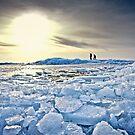 On Thin Ice by Photonook