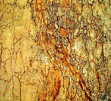 Rusty Wall by rcurtiss000