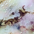 The jellyfish ballet  by Sabina Dimitriu