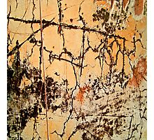 Rusty Scratches Photographic Print