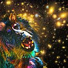Starry, Starry Funky Monkey by Scott Evers