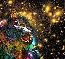 Starry, Starry Funky Monkey by Scott Evers