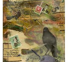 the bird is the word Photographic Print