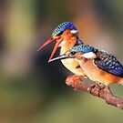 Parental Guidance by ajay2011