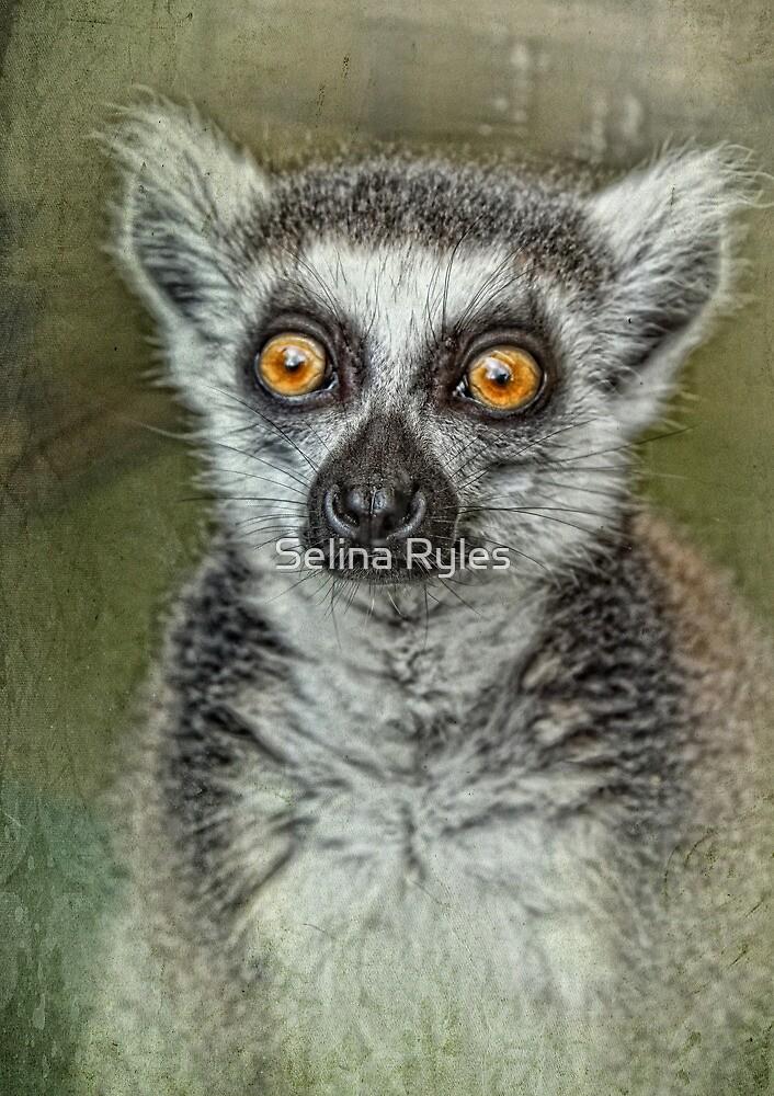 Portrait of a Lemur  by Selina Ryles