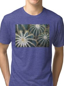 Sharp Beauty - Elegantly Ordered Cactus Needles Tri-blend T-Shirt