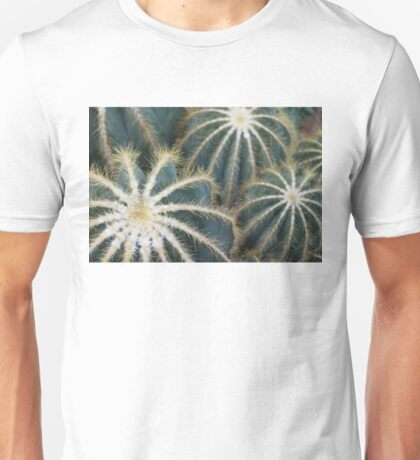 Sharp Beauty - Elegantly Ordered Cactus Needles Unisex T-Shirt