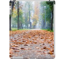 Autumn Leaves in the park iPad Case/Skin