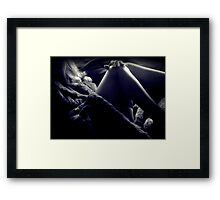 Legs and Light Framed Print
