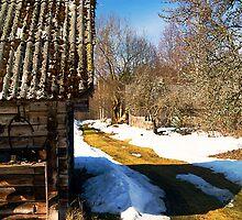 Farm. Spring. by tutulele