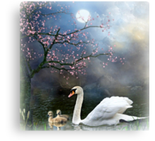 By the Light of the Silvery Moon ! Metal Print