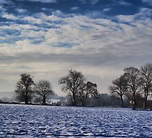 Snow In The Mist by Dave Godden