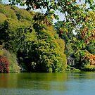 Stourhead - Autumn Folly by ColinKemp