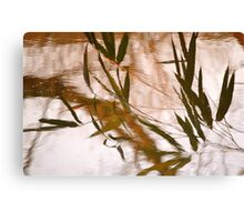 WaterReflections.... 30 Canvas Print