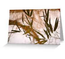 WaterReflections.... 30 Greeting Card
