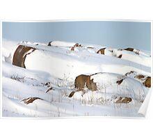Snowed Rocks, Churchill, Canada Poster