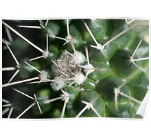 Spikey, Prickly, Ouch !!!! Poster