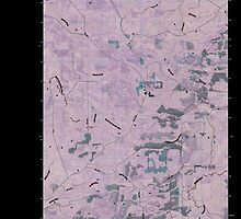 USGS Topo Map Washington State WA Macafee Hill 20110418 TM Inverted by wetdryvac