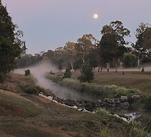 Full Moon at the Kedron Brook by John Vriesekolk