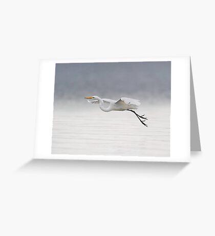 Foggy Flight Greeting Card