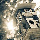 Let The Sunshine In by Johanne Brunet