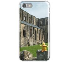 Duck at Tintern Abbey iPhone Case/Skin